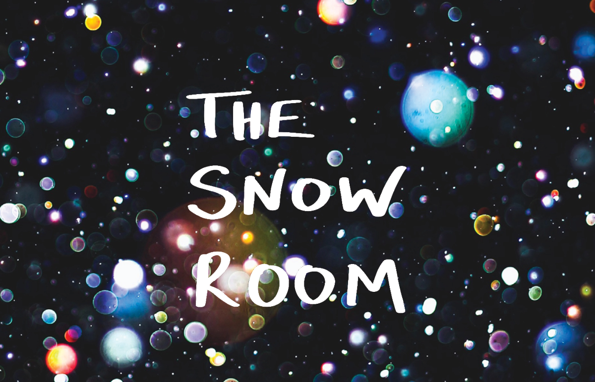 The Snow Room